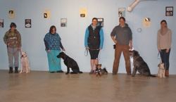 Photo of dog classes